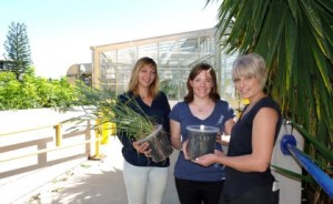 PhD students Cecile Richard, Amy Watson and Hannah Robinson are working to revolutionise cereal production.